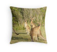 Kangaroo 5 Throw Pillow