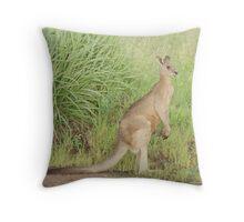 Kangaroos 7 Throw Pillow