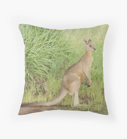 Kangaroos 7 Throw Pillow
