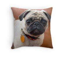 Lovely Aiko Throw Pillow
