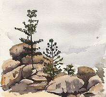 Arthur Bay, Magnetic Island by Thomas Kayser