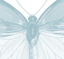 Joy Butterfly Sticker