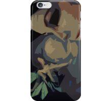 A Fairy Sighting iPhone Case/Skin