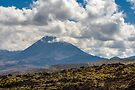 Mt Tongariro by Werner Padarin