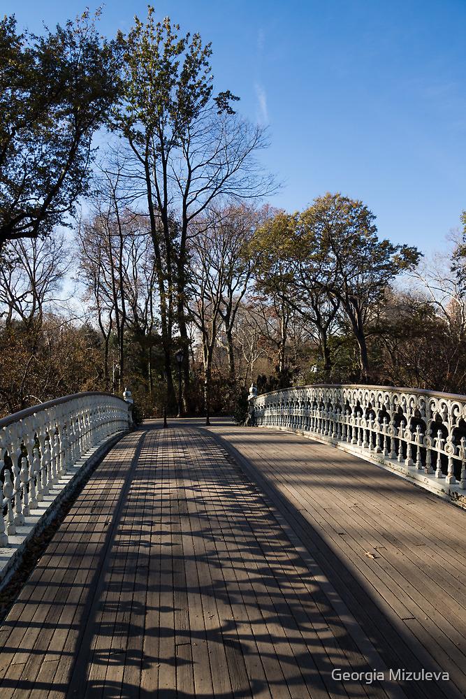 Central Park Bridge Shadows by Georgia Mizuleva