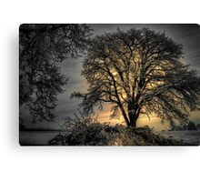The Early Glow ~ Snow ~ Canvas Print