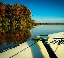 Fall Paddle by Douglas Hamilton
