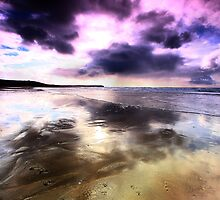 Elements - The purple fringe by Mark Haynes Photography