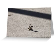 Solitary Reptile Greeting Card