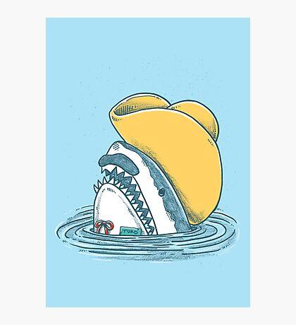 Funny Hat Shark Photographic Print