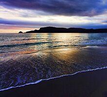 Adventure Bay Beach, Bruny Island, Tasmania, Australia by PC1134