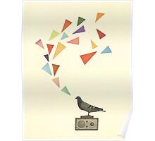 Pigeon Radio Poster