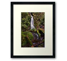 Whataroa No 5 Framed Print