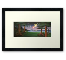 View From The Park Framed Print