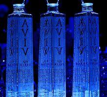 Aviv 613 Vodka by Kate Purdy