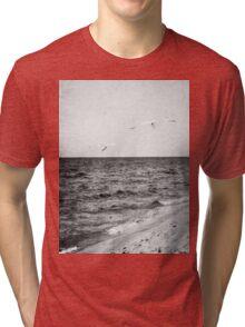 Lake Michigan Seagulls Tri-blend T-Shirt