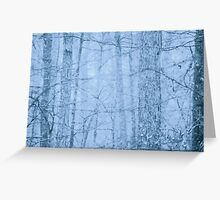 Faded Woods Greeting Card