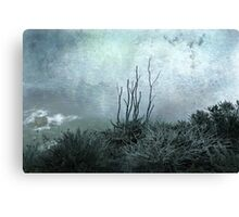 Facing the unknown together Canvas Print