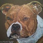 American Pit Bull Terrier by Anita Meistrell Putman
