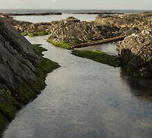 Coastlife by VanquishMedia