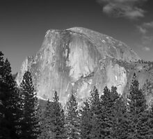 Half Dome in Black and White by rhlphoto