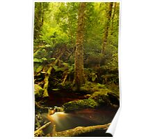 Red cascade, Hebe River Poster