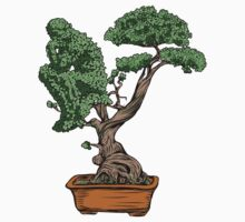 Bonsai Thinking Baby Tee