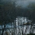Fog Settles on The River by Lee LaFontaine