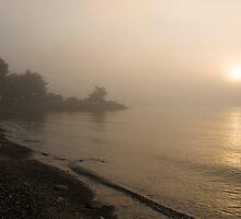 Thin Fog and Sunshine by Georgia Mizuleva