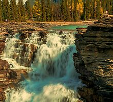 Athabasca Falls by Pauline Lewis