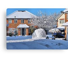 Compact and Bijou ,.... Igloo for sale Canvas Print