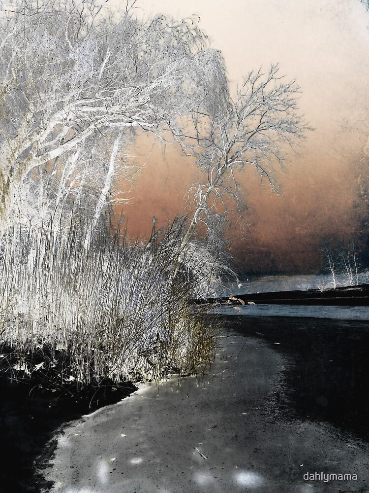 Winter Shroud by SRowe Art