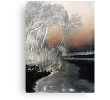 Winter Shroud Canvas Print