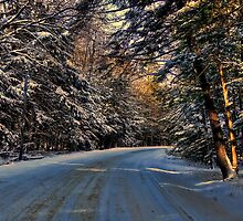 Driving through a Winter Wonderland by vigor