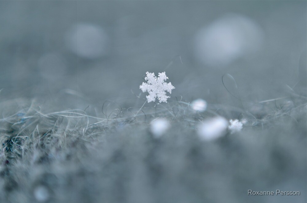 Snowflake by Roxanne Persson