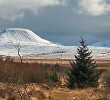 The Black Mountain by Steve  Liptrot