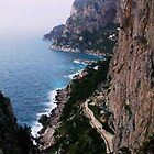 The Amalfi Coast by Polly Peacock