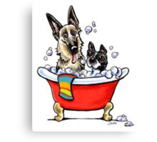 German Shepherd & Boston Terrier in the Bath Canvas Print