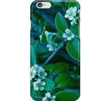 Ice Flowers 2 iPhone Case/Skin