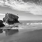 Natural Bridges State Beach by James Watkins