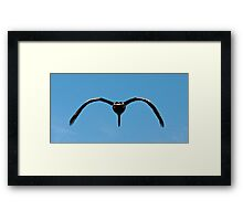 A Peli Can Framed Print