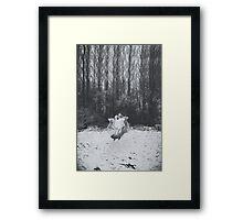 Ghost Dance. Framed Print