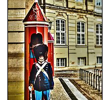 Royal Life Guard, Copenhagen, by Tim Constable by Tim Constable