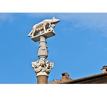 Siena, Statue of Wolfe with Romulus and Remus, Toscana, Italy Photographic Print