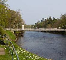 Benches and suspension bridge over River Ness by ashishagarwal74