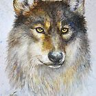 Wild wolf by LauraMSS