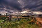 Path to Whispering Wood by Nigel Bangert