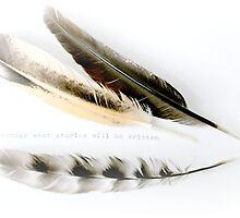 what story will be written~ by Brandi Burdick