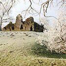 Pendragon Castle by Steve  Liptrot