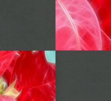 Mottled Red Poinsettia 2 Blank Q6F0 Sticker
